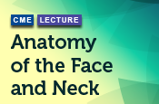 Anatomy of the Face and Neck