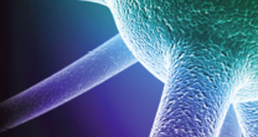 Identifying and Tracking Progressive MS Disease