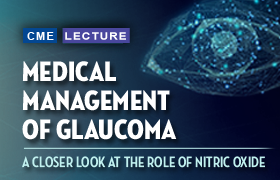 Medical Management of Glaucoma: A Closer Look at the Role of Nitric Oxide