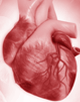 Rapid-Fire Roundtable: Expert Insights on the Use of PCSK9 Inhibitors to Reduce CV Risk
