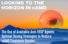 Looking to the Horizon: Earlier Diagnosis and Advances in Treating Neovascular Age-Related Macular Degeneration—The Use of Available Anti-VEGF Agents: Optimal Dosing Strategies to Reduce nAMD Treatment Burden