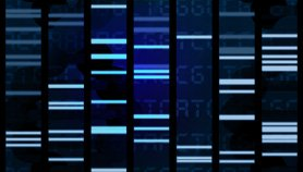 Whole-Genome Sequencing