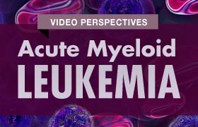 AML Video Perspectives
