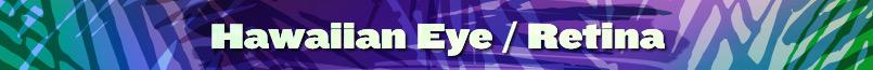 Hawaiian Eye/Retina Meeting