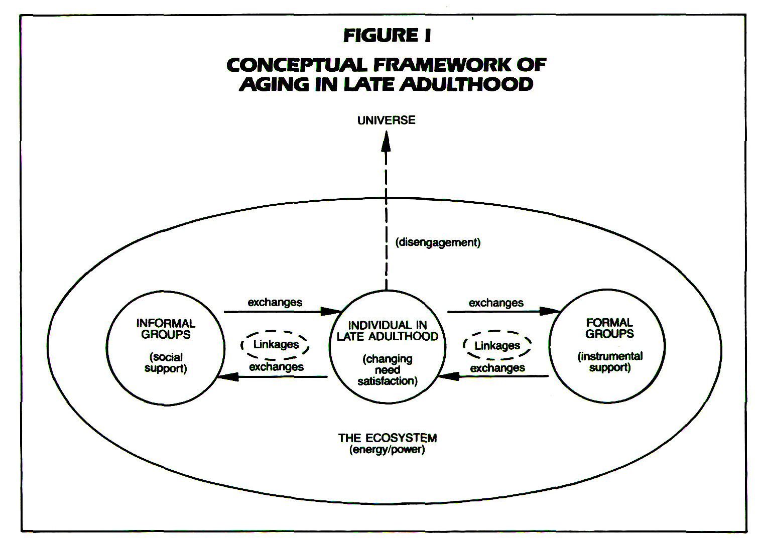 FIGURE 1CONCEPTUAL FRAMEWORK OF AGING IN LATE ADULTHOOD