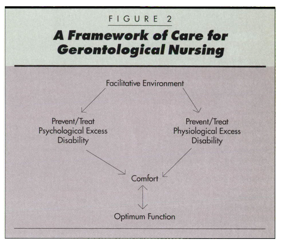 FIGURE 2A framework of Care tor Gerontological Nursing