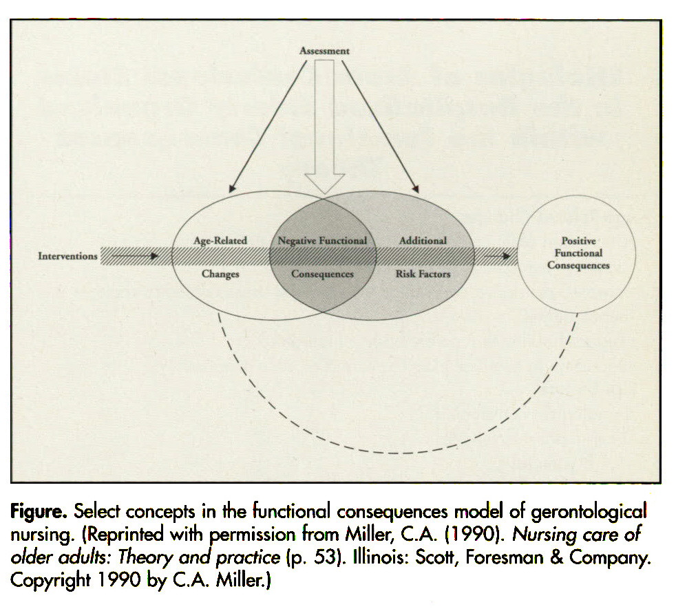 Figure. Select concepts in the functional consequences model of gerontological nursing. (Reprinted with permission from Miller, C.A. (1990). Nursing core of older adults: Theory ana practice (p. 53). Illinois: Scott, Foresman & Company. Copyright 1 990 by C.A. Miller.)