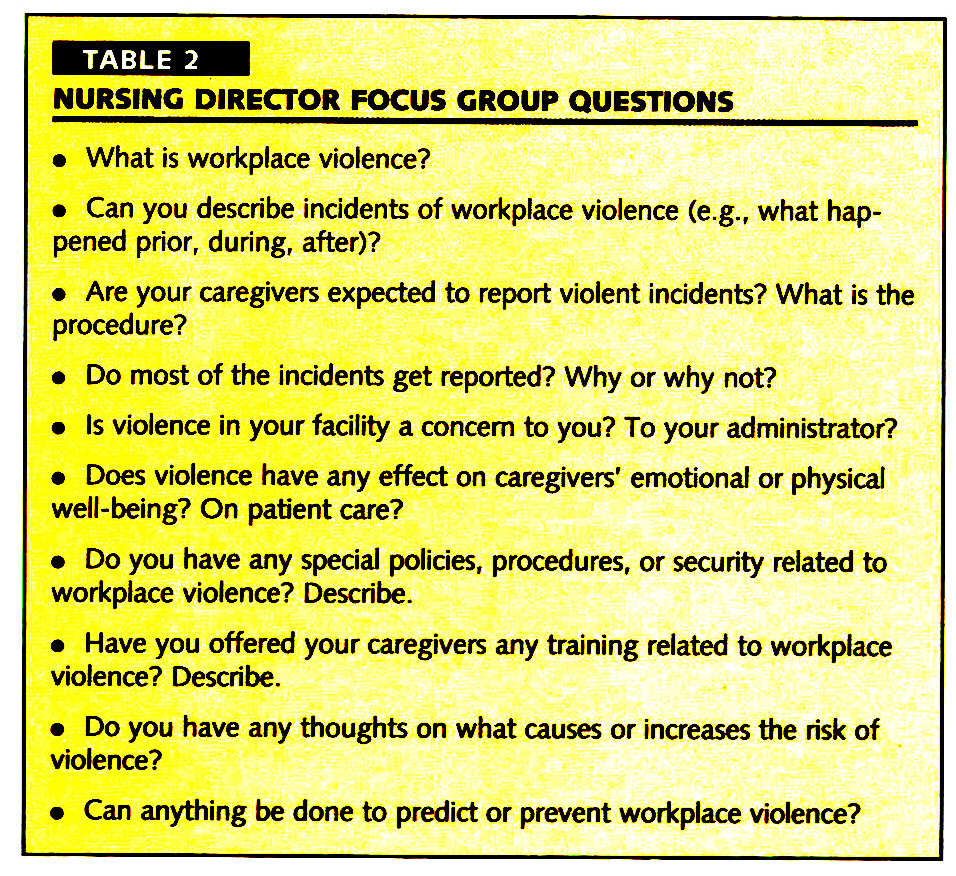 TABLE 2NURSING DIRECTOR FOCUS CROUP QUESTIONS