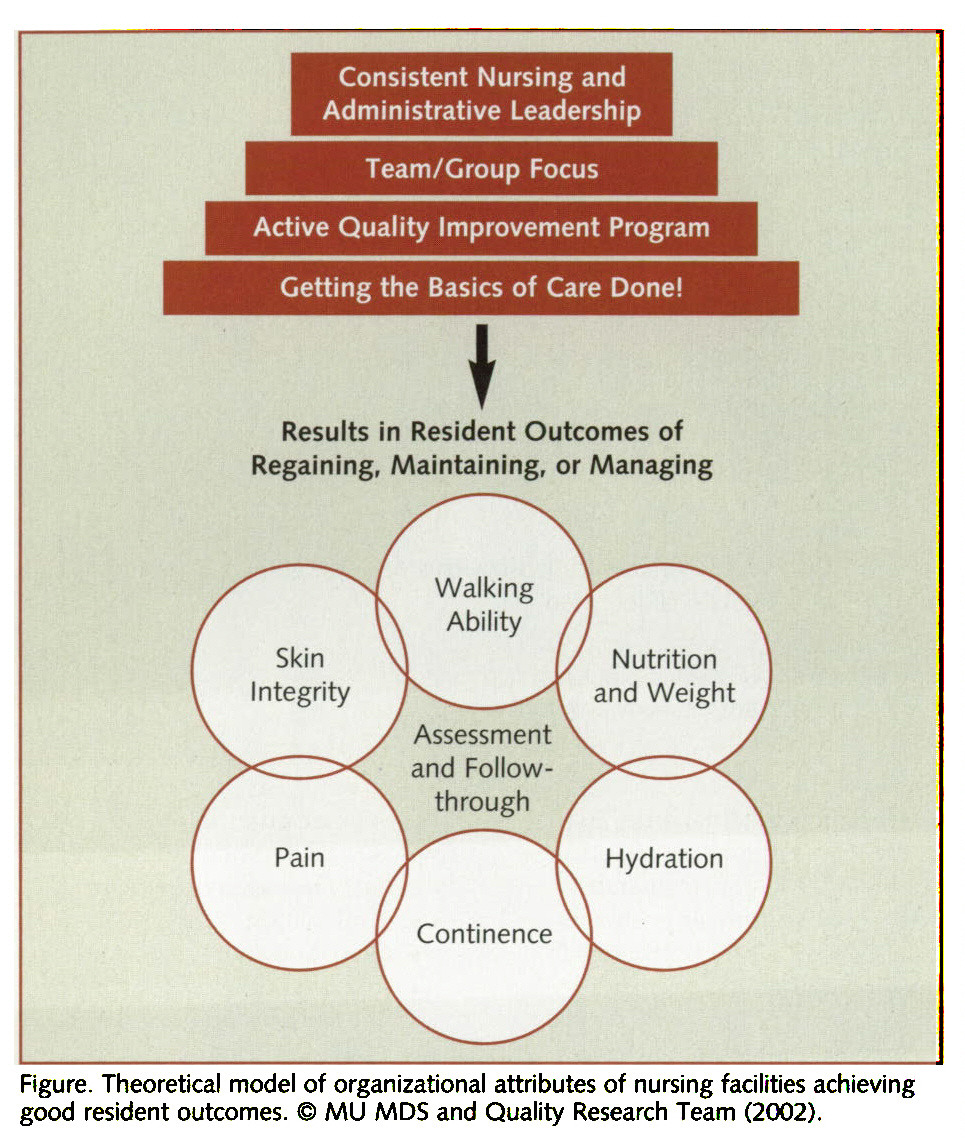 Figure. Theoretical model of organizational attributes of nursing facilities achieving good resident outcomes. © MU MDS and Quality Research Team (2002).