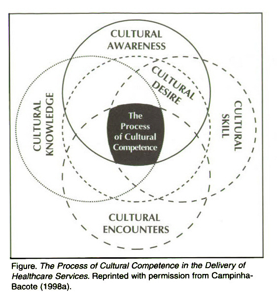 Culture Language and Health Literacy  Official web site