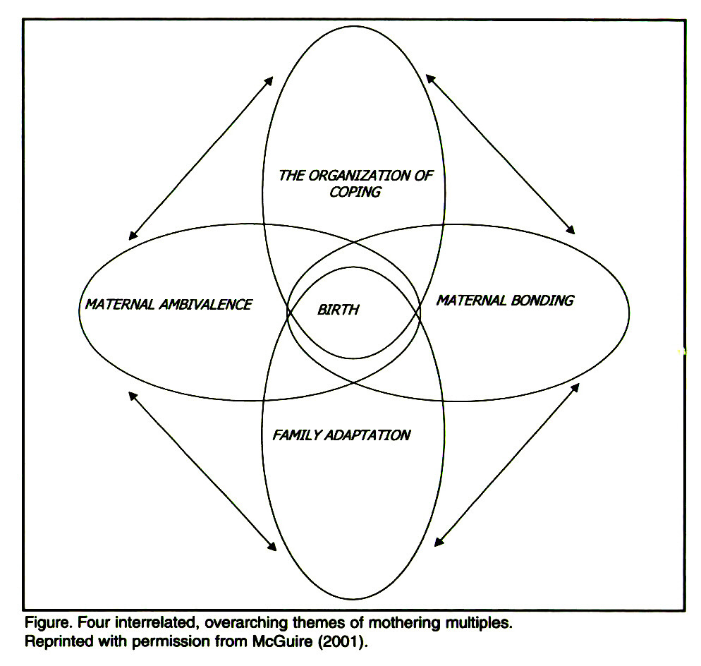 Figure. Four interrelated, overarching themes of mothering multiples. Reprinted with permission from McGuire (2001).