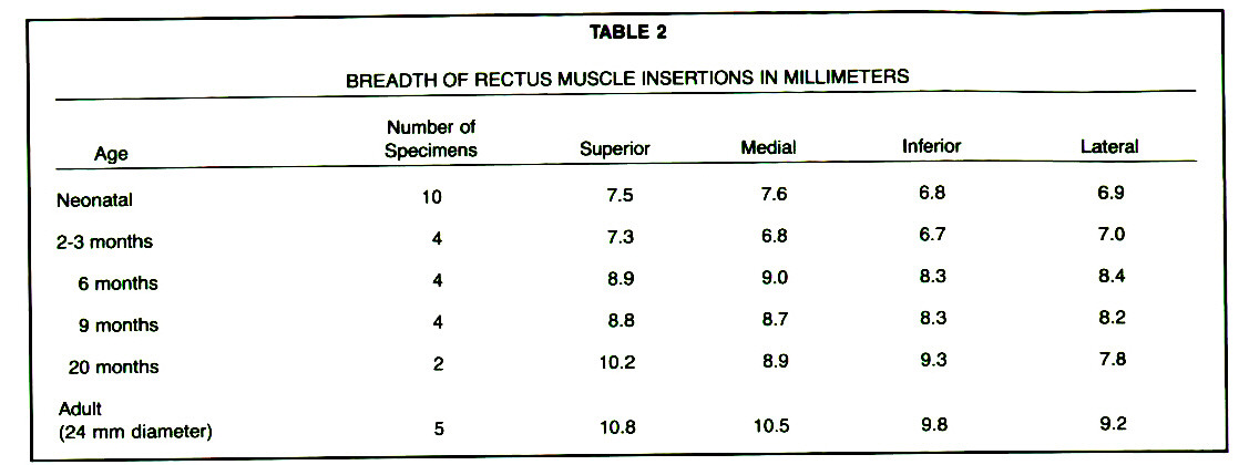 TABLE 2BREADTH OF RECTUS MUSCLE INSERTIONS IN MILLIMETERS