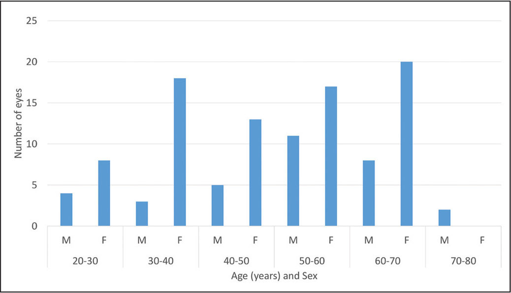 Distribution of treated eyes by age and sex. A total of 109 eyes of 57 patients underwent thermal pulsation therapy. The mean patient age was 49 years (interquartile range: 38 to 60), 70% were female, and the primary refractive procedure was LASIK (n = 91, 83%) or photorefractive keratectomy (n = 18, 17%).