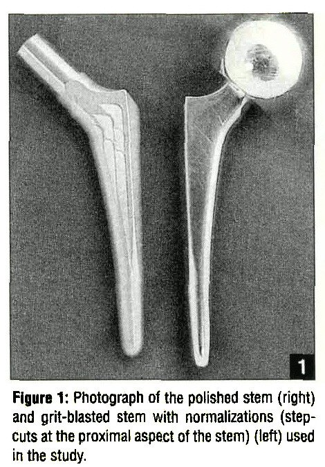 Figure 1: Photograph of the polished stem (right) and grit-blasted stem with normalizations (stepcuts at the proximal aspect of the stem) (left) used in the study.