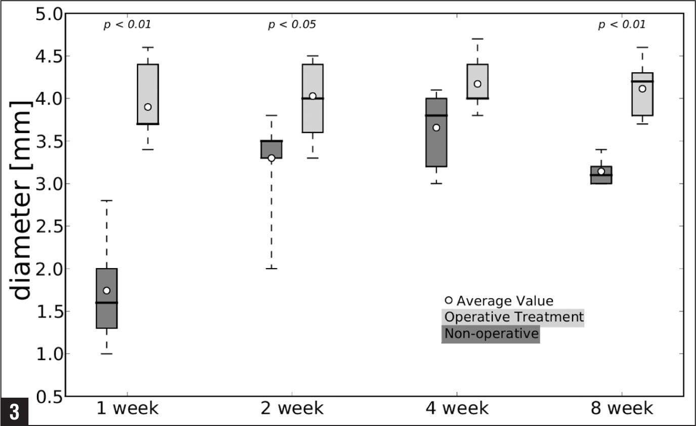 Effect of operative vs nonoperative treatment on the diameter of the repair site of rat Achilles tendon over time after transection. The boxes extend from the lower to the upper quartile values of the data, with a line at the median. The whiskers extending from the box show the range, and the circles assign average values of the data set. Upper X-axis tick labels indicate minimal statistical significance (P values) for diverseness of the cohorts.