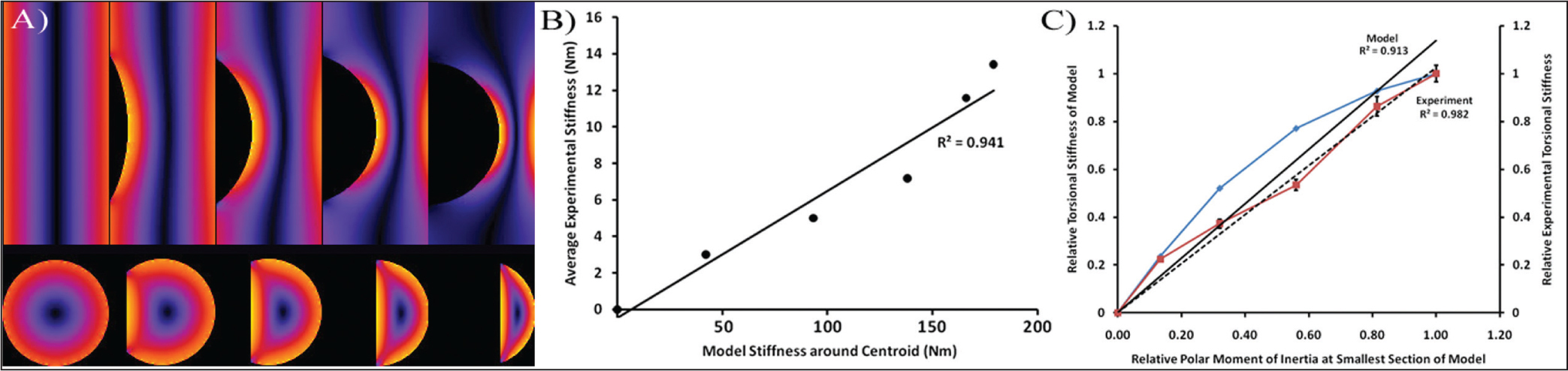 von Mises shear stress in each finite element model at 10° of rotation. The solution was linear, using 8 node trilinear brick elements. The samples are, from right to left, 67% cortical width defect, 50% cortical width defect, 33% cortical width defect, 17% cortical width defect, and intact (A). Linear correlation of the experimental femur torsional stiffness to the predicted torsional stiffness of the undamaged cross-section of the cylinder (B). Linear correlation of the normalized torsional stiffness of the finite element model (left) and the experimental femurs (right) to the torsional (ie, polar) moment of inertia relative to the polar moment of the undamaged cross-section of the cylinder (C).