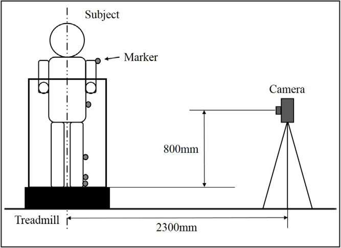 Walking measurement system. Walking was assessed on a treadmill, and a digital camera recorded the motion.