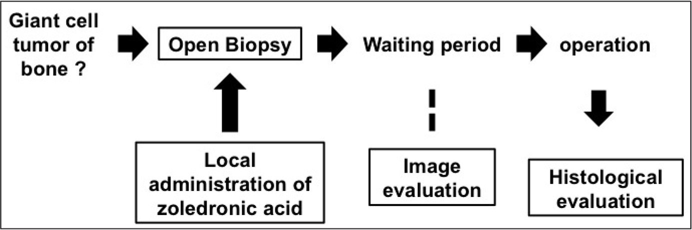 Treatment strategy for giant cell tumor of bone. After open biopsy, zoledronic acid is administered locally, with or without artificial bone. Image evaluation is done during the waiting period, and the necrosis rate of giant cell tumor of bone is evaluated based on histologic findings.