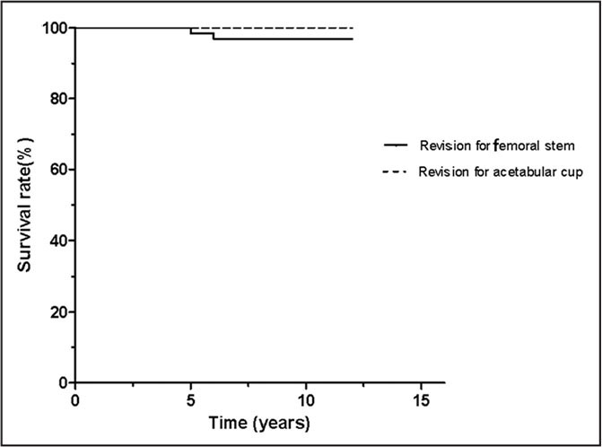 Kaplan–Meier survivorship revealed a cumulative survival rate of 97.4% at 11.8-year follow-up (straight line), with any revision as the endpoint. With an acetabular cup revision as the endpoint, the survival rate would be 100%.