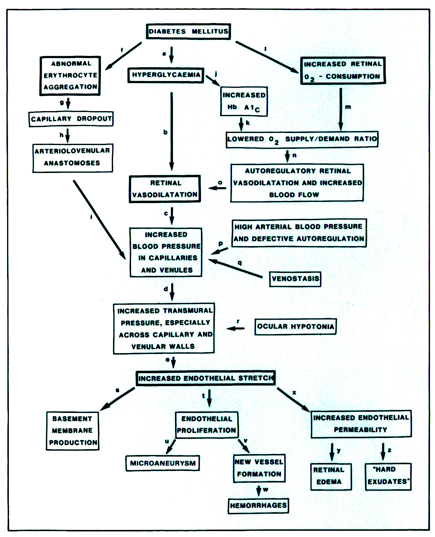 Diabetes mellitus pathophysiology flowchart create a flowchart figure 2 a flow diagram of the model of the pathogenesis of diabetic proliferative retinopathy pooptronica