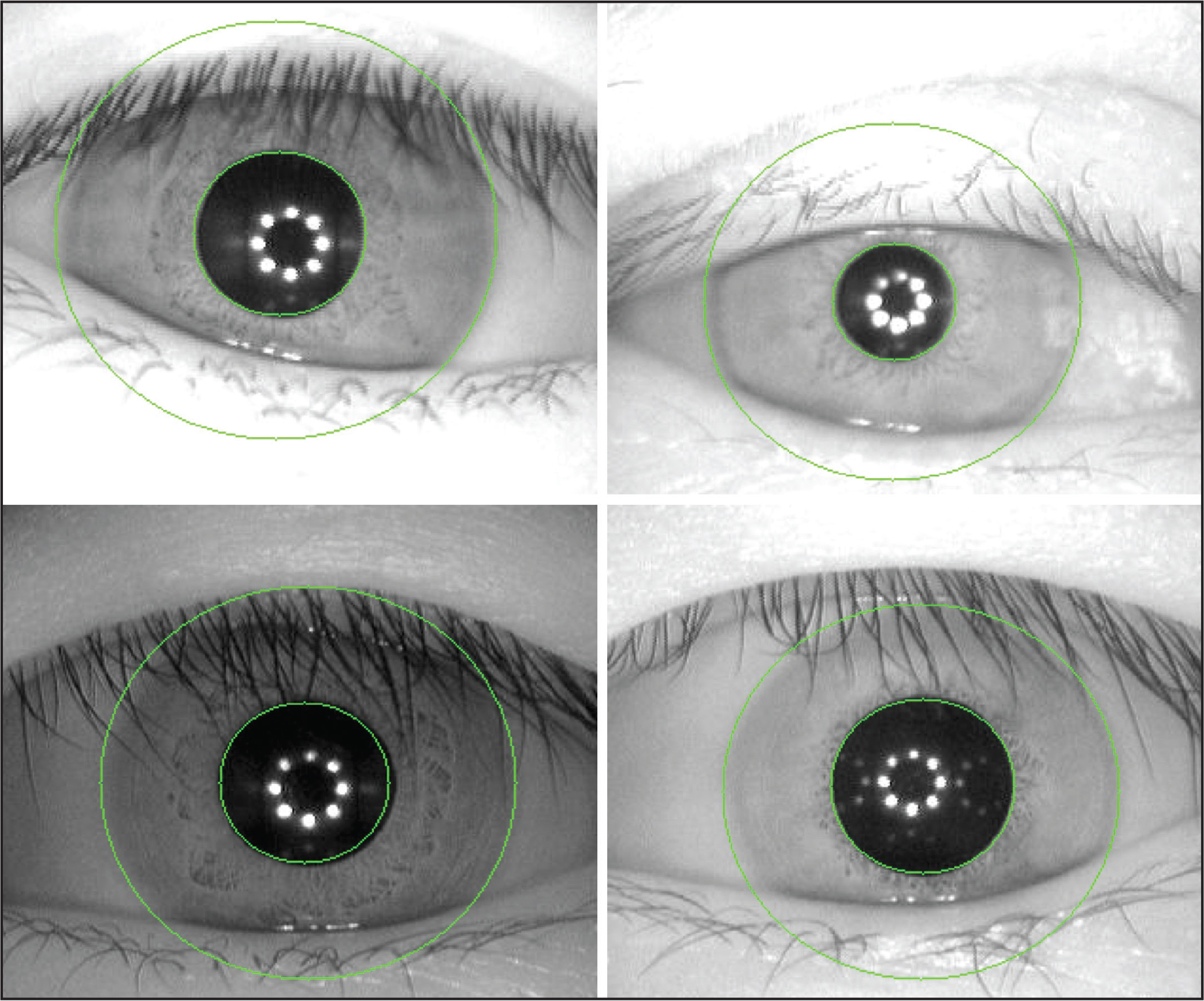Four examples of successful iris segmentation under demanding conditions, such as eyelash and eyelid occlusions and changing light conditions.