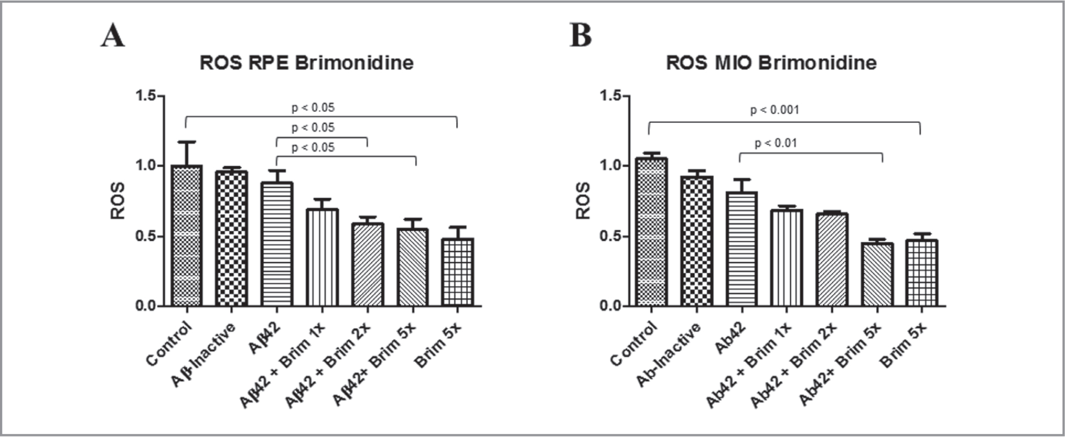 Reactive oxygen species (ROS) production. (A) Adult human retinal pigment epithelial (RPE) cells after pretreatment with 1×, 2×, and 5× concentrations of brimonidine and exposure to amyloid-beta 1–42 (Aβ42) 10μM. (B) Müller (MIO) cells after pretreatment with 1×, 2×, and 5× concentrations of brimonidine and exposure to Aβ42 10μM. Data are normalized to set control (untreated) samples at 100% of fluorescence signal for comparison.