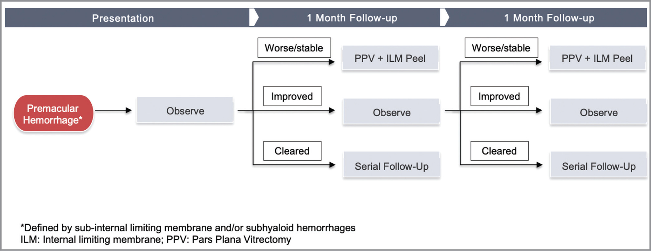 Flow chart demonstrating the management of non-accidental trauma infants in the study based on the status of premacular hemorrhage.