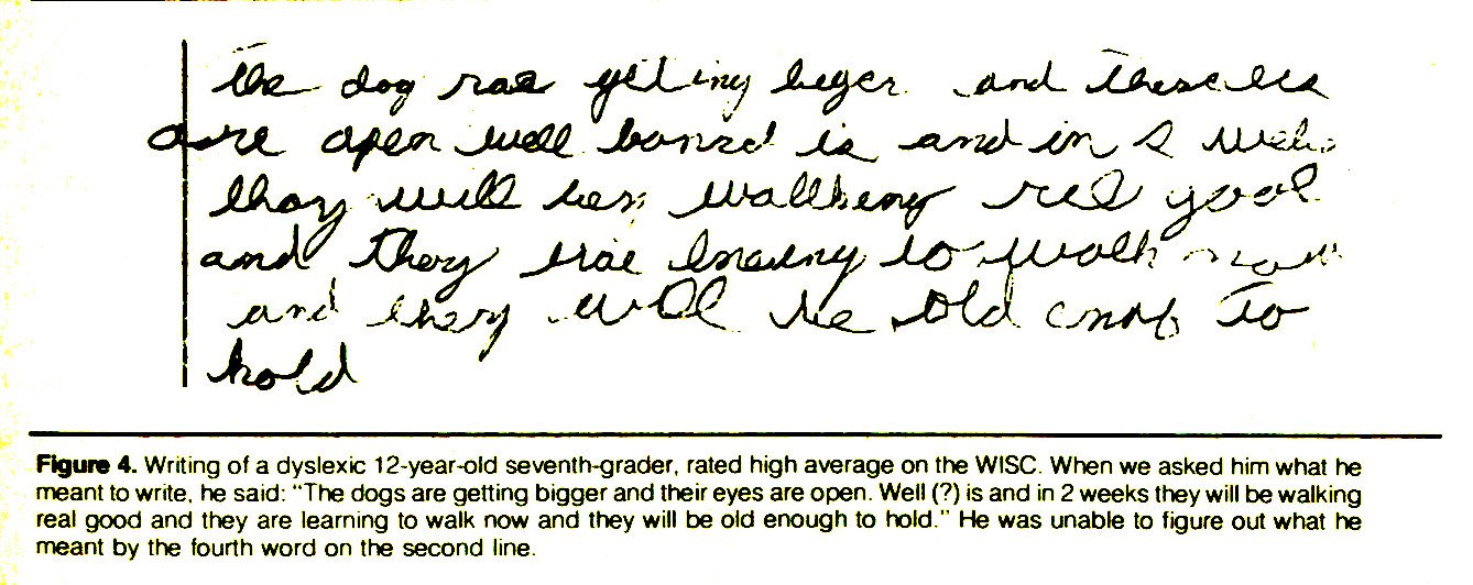 """Figure 4. Writing of a dyslexic 12-year-old seventh-grader, rated high average on the WISC. When we asked him what he meant to write, he said: """"The dogs are getting bigger and their eyes are open. Well (?) is and in 2 weeks they will be walking real good and they are learning to walk now and they will be old enough to hold."""" He was unable to figure out what he meant by the fourth word on the second line."""