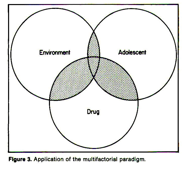 Figure 3. Application of the multifactorial paradigm.