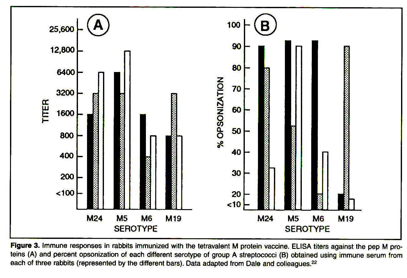 Figure 3. Immune responses in rabbits immunized with the tetravalent M protein vaccine. ELISA titers against the pep M proteins (A) and percent opsonization of each different serotype of group A streptococci (B) obtained using immune serum from each of three rabbits (represented by the different bars). Data adapted from Dale and colleagues.22