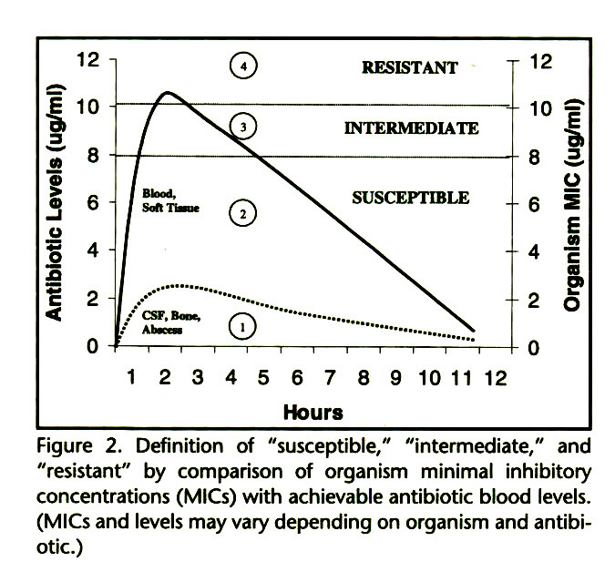 "Figure 2. Definition of ""susceptible,"" ""intermediate,"" and ""resistant"" by comparison of organism minimal inhibitory concentrations (MICs) with achievable antibiotic blood levels. (MICs and levels may vary depending on organism and antibiotic.)"