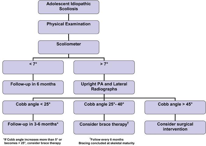 A flowchart showing adolescent idiopathic scoliosis management. PA = posteroanterior.Figure courtesy of Monique S. Burton, MD.