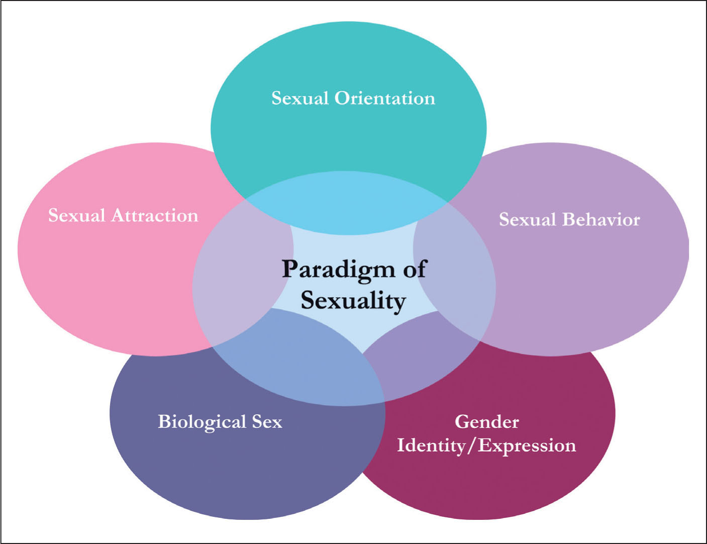 Paradigm of sexuality.Image courtesy of Physicians for Reproductive Choice and Health.Reprinted with permission.