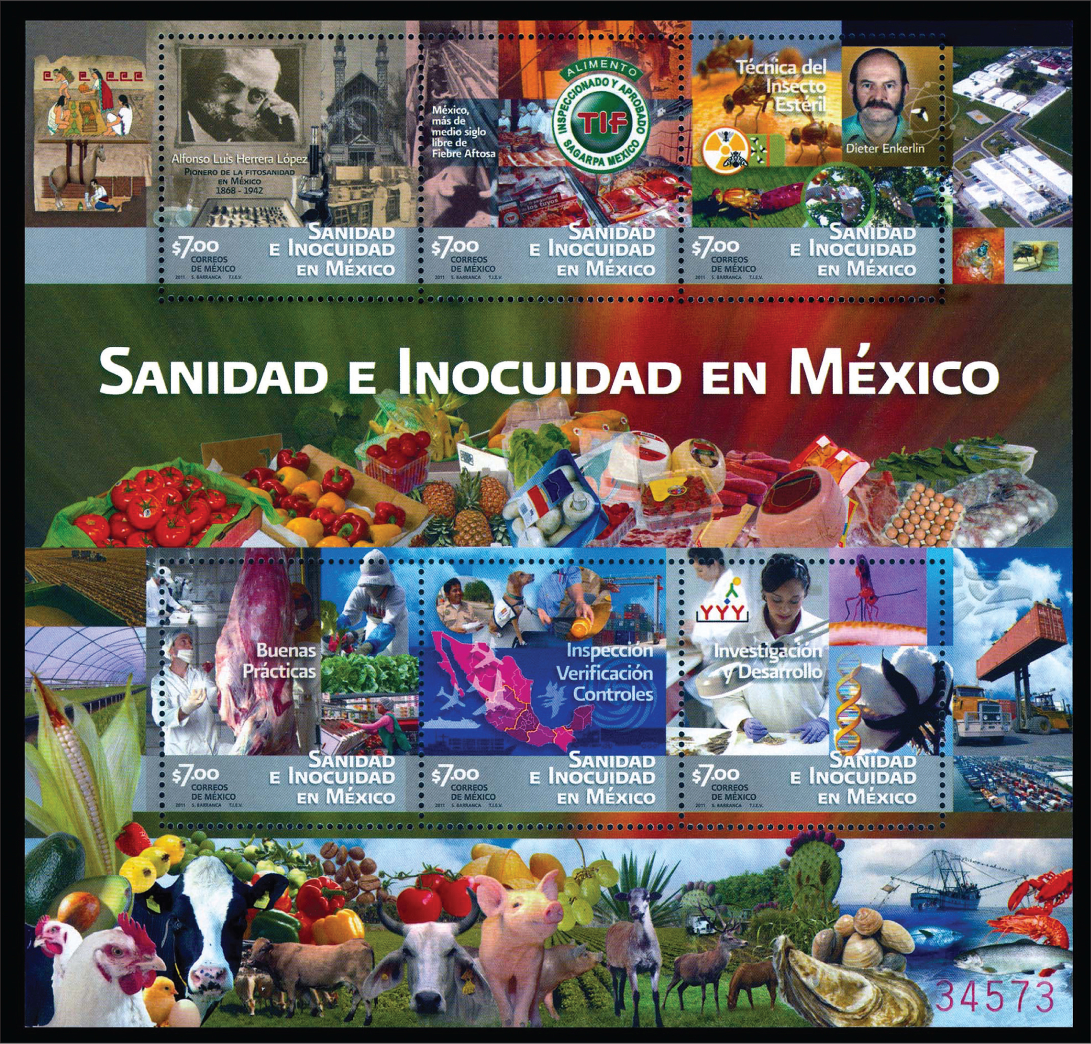 Souvenir sheet from Mexico issued in 2011 emphasizing health and safety in Mexico. The focus is primarily upon food safety.Image courtesy of Stanford T Shulman, MD