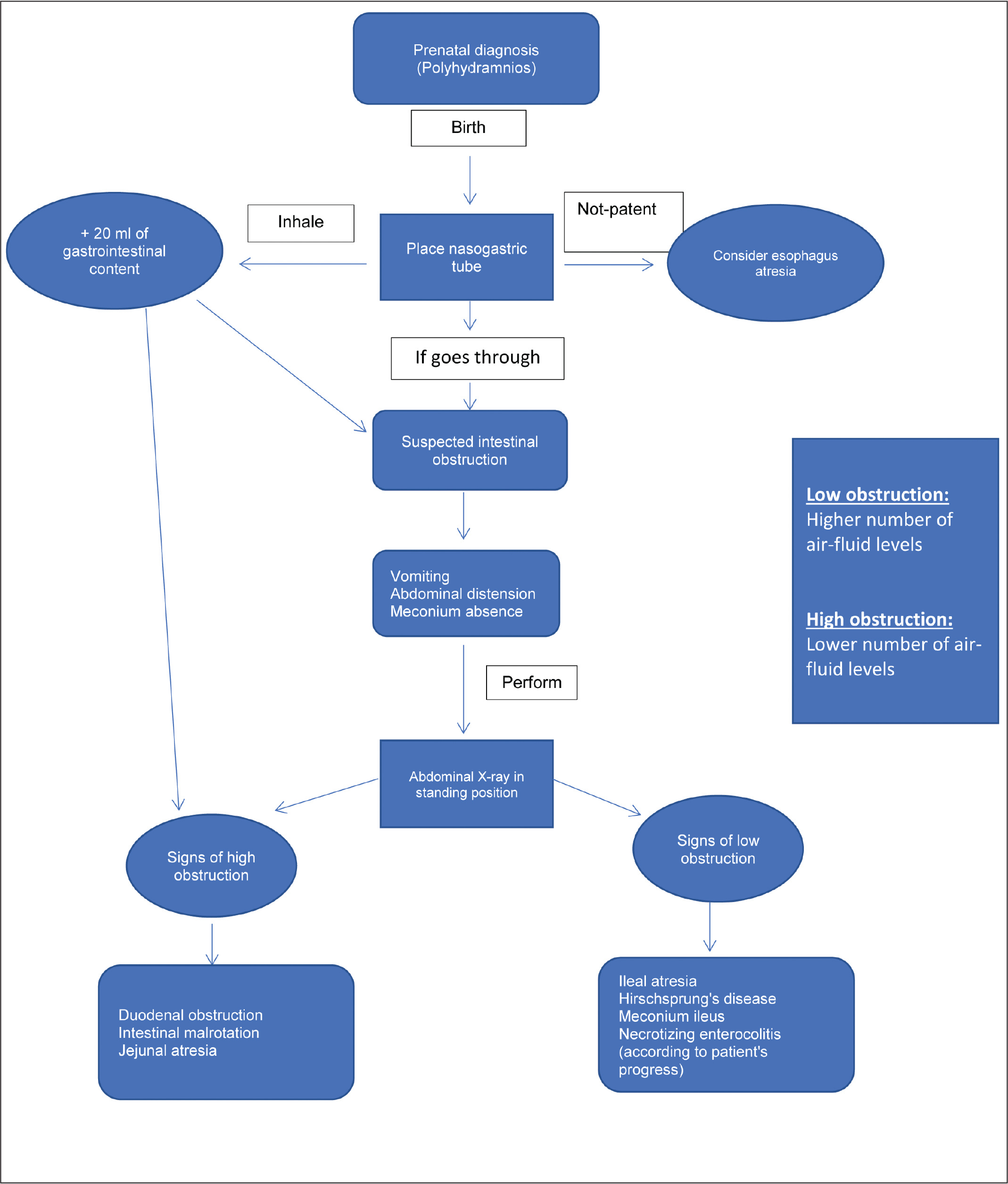 Algorithm of intestinal obstruction syndrome.