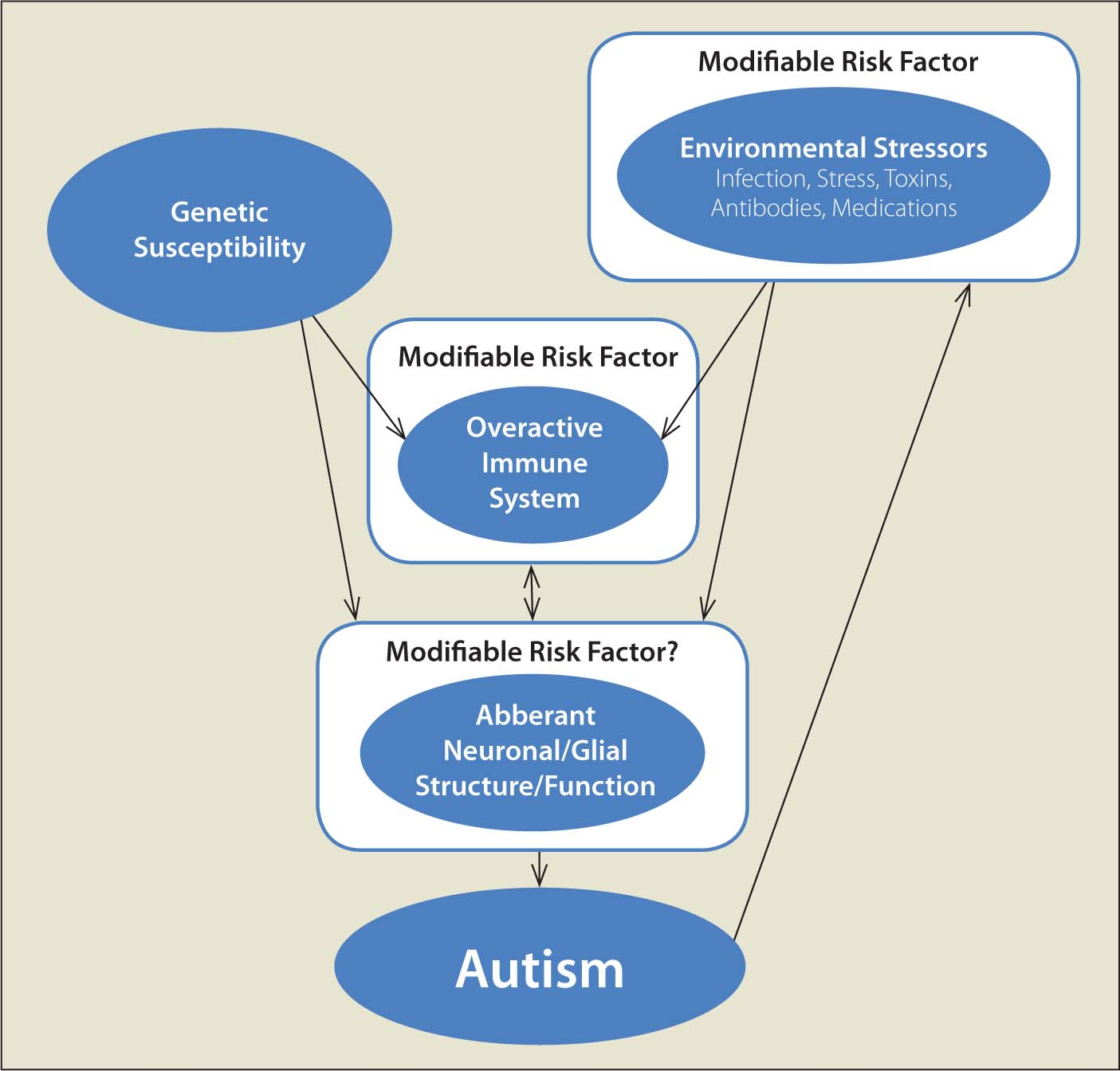 Model of genetic and environmental causes of autism. Cytokines and other immune activators that affect neuronal pathways during critical periods of brain development may cause some of the core dysfunctional symptoms found in autism.Image courtesy of Laura N. Antar, MD, PhD. Reprinted with permission.
