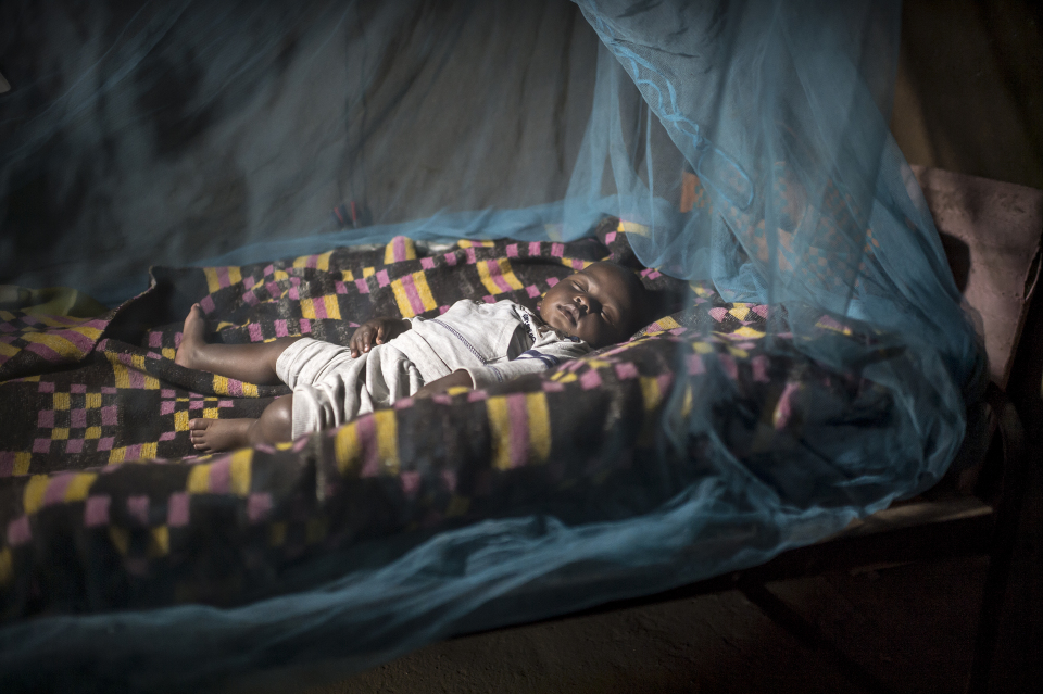 child under a mosquito net